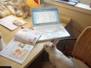 Home offices - Charlotte Evans, Cottontails