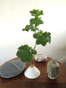 Flower vases for the home office