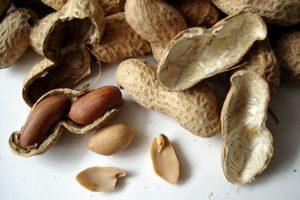 Sack a client - peanuts